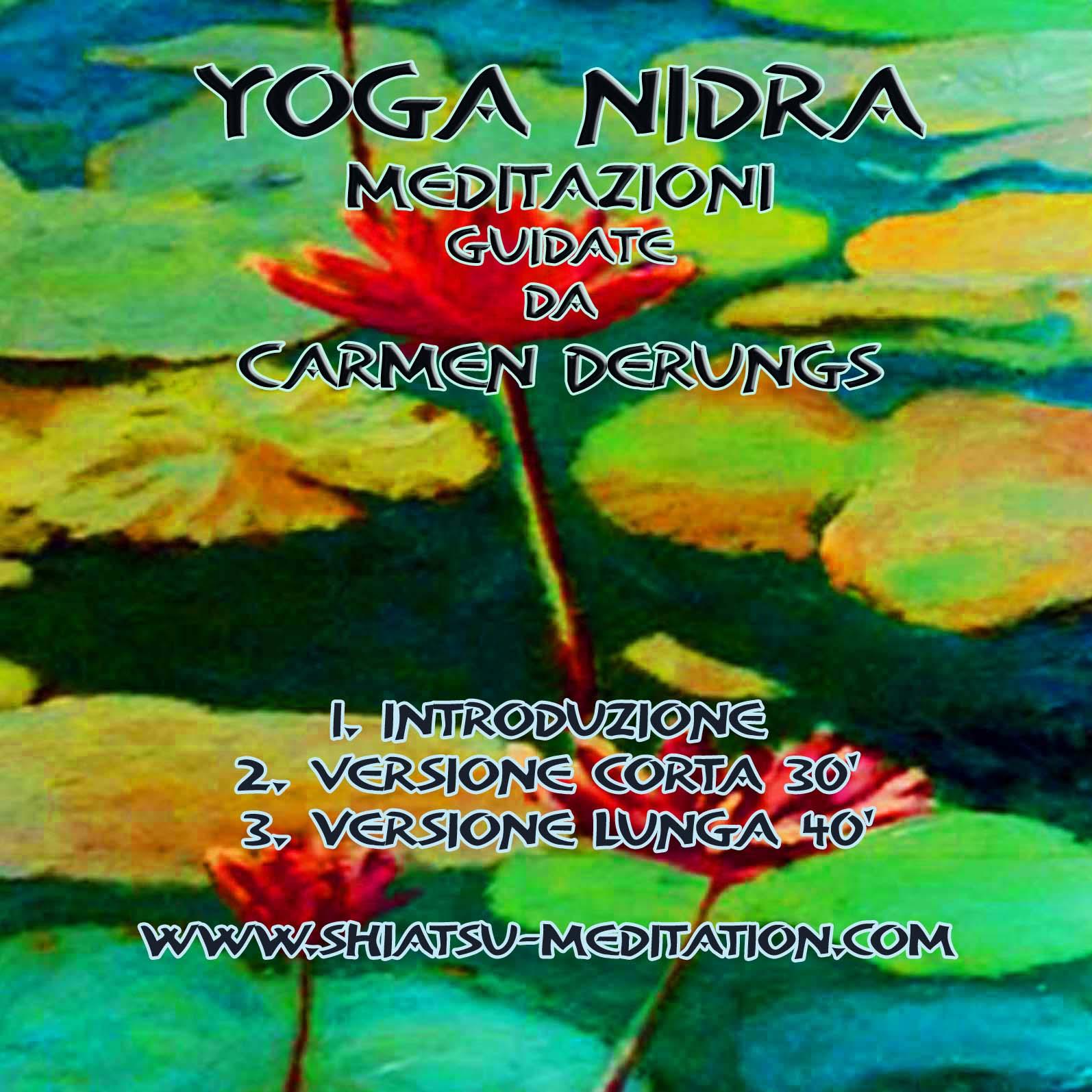 Yoga nidra breathwork / mindfulness seminari &; corsi sedute e lezioni
